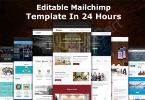 I Will Design A Proficient Editable Mailchimp Template In 12 Hours