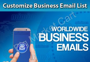 I Will Provide You Customize Business Email List