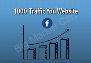 I will Provide 1000 Facebook Traffic You Website