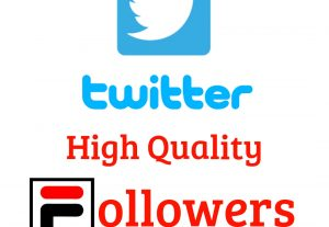 I Will Provide You 200 Twitter High Quality Real Followers Guaranteed