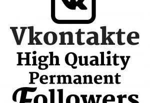 I Will Add 200 Vkontakte High Quality Real Followers