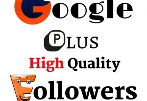 I Will Provide you 500 Google Plus High Quality Real Followers Guaranteed