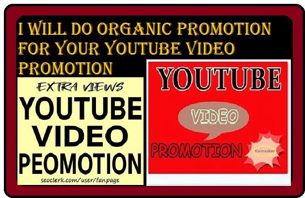 I will do organic promotion for your youtube video promotion