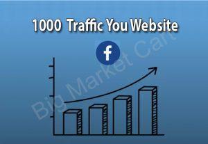 I will Provide 1000 Facebook Traffic You Website