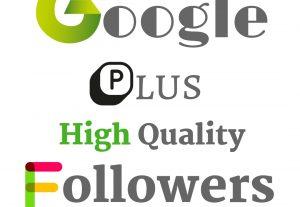 I Will Add 1000 Google Plus High Quality Genuine Followers